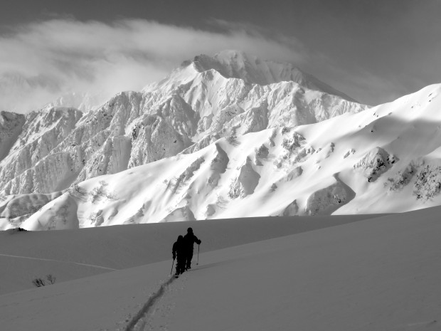 Backcountry skiing avalanche terrain in Hakuba, Japan.  photo: miles clark