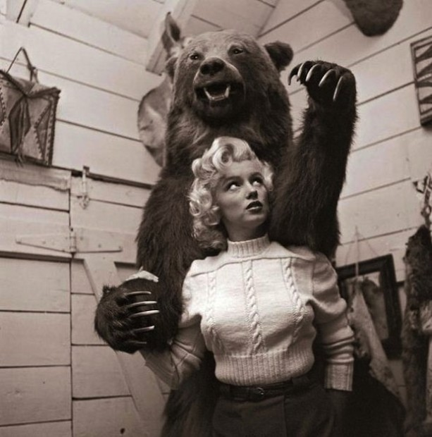 Marilyn bear attack