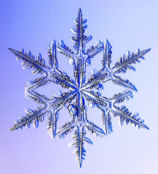 Photo of a snowflake.  Looks clear...as it should