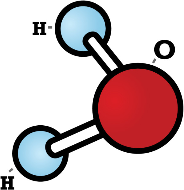 A water molecule and its vicious V