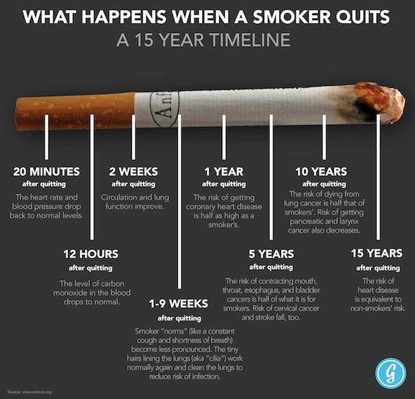 Brain Post What Happens When A Smoker Quits A 15 Year