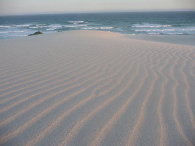 sand dune emergence