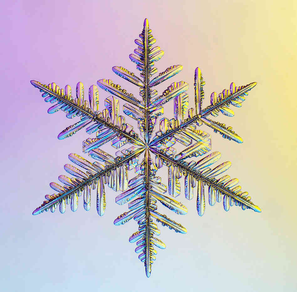 brain post why no two snowflakes look alike snowbrains