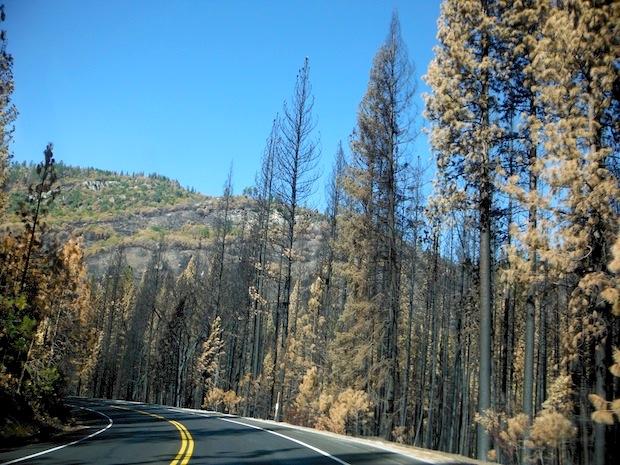 Highway 120 near Yosemite Park entrance