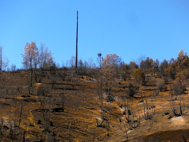 Scorched earth near Rainbow Pools