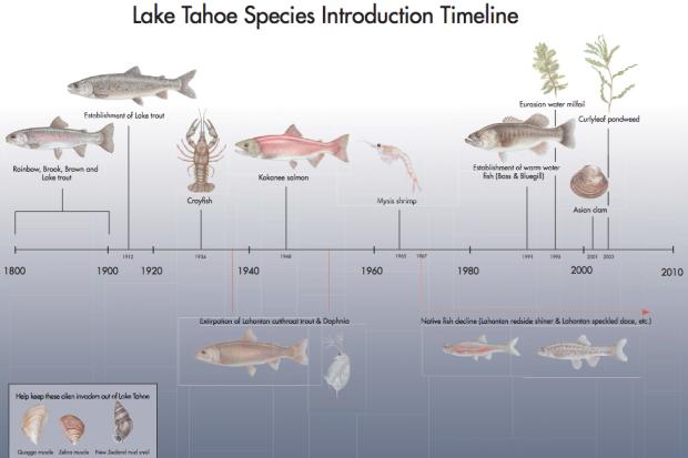 Invasive species of Lake Tahoe timeline
