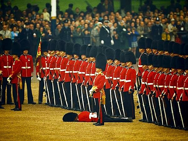 Irish guard faints.