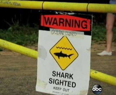 Shark sign posted in Maui after the attack on Monday.