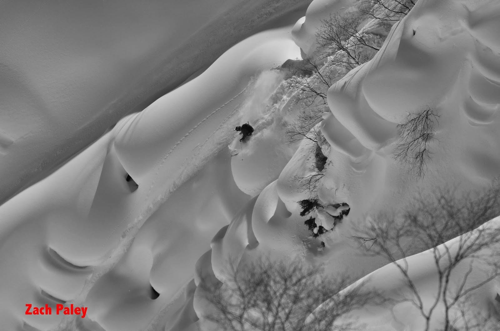 ski powder japan