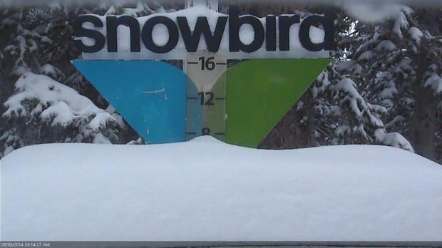 "Snowbird snow stake today at 10""."