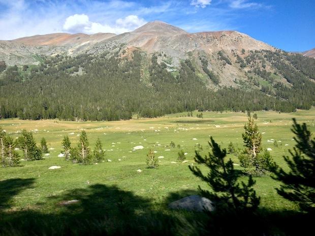 Mt. Gibbs and Dana Meadows.  Gorgeous.