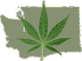 legal marijuana in washington state