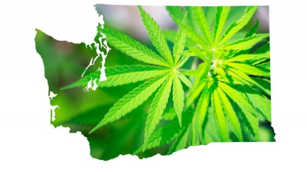 article review marijuana legal in washington The failed promise of legal pot of the possible revenue from marijuana but if the washington survey is even and was up for his ninety-day review the.