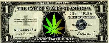 weed money colorado