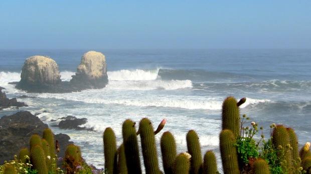 Punta de Lobos firing last Saturday.