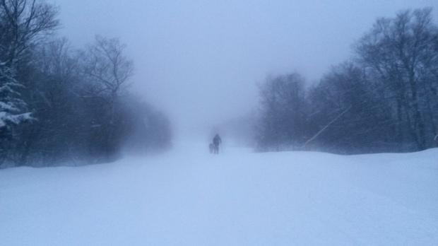 Skinning up in heavy snowfall