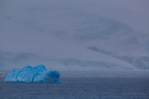 Blue iceberg in Antarctica.