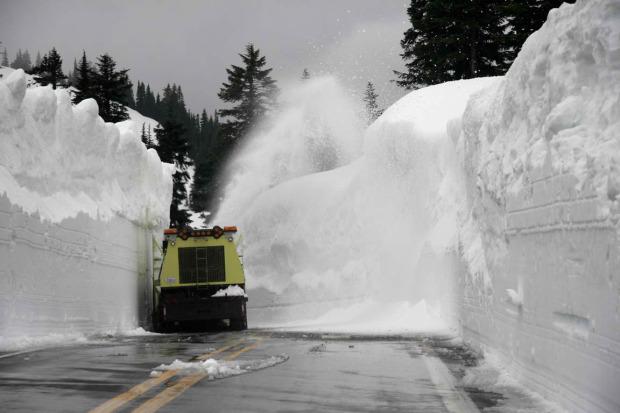 Ridiculously deep snow banks. Chinook Pass, Mt. Rainier National Park, WA. June 2011. photo: WSDOT