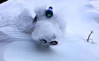 Jackson Hole, WY on January 4th, 2015.  Aaron Schreiber enjoys the deepness. PC Tim Swartz