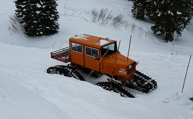 When it comes to over snow transportation, Alta knows what's good