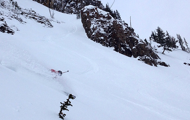 Yes, there was powder today at Jackson hole