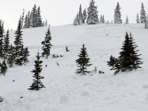 The crown of the skier-triggered avalanche (Colorado Avalanche Information Center)