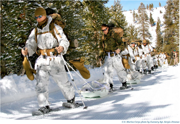 US Marines train to operate in medium- to high-altitudes, and severe weather and terrain conditions at the Marine Corps Mountain Warfare Training Center in Bridgeport, California, February 22, 2010.