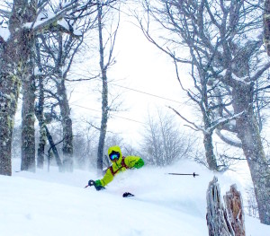 Jared Åkerström ripping the trees today at Catedral today. photo: TJ David