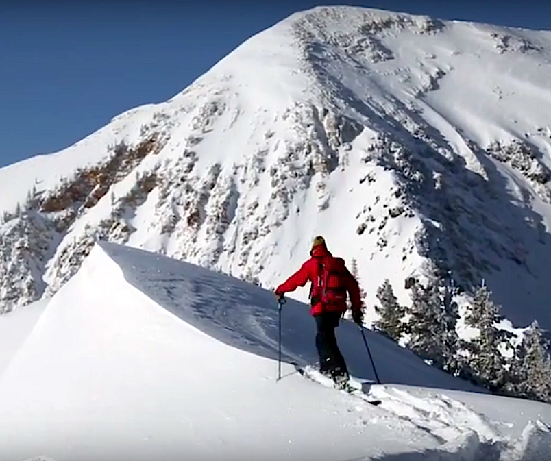 snowbird utah ski patrol powder day