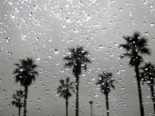 California rain.