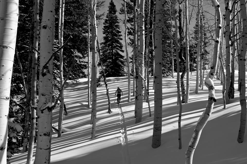 Powderwhore poetically strolling off into the backcountry for the last time. photo: powderwhore