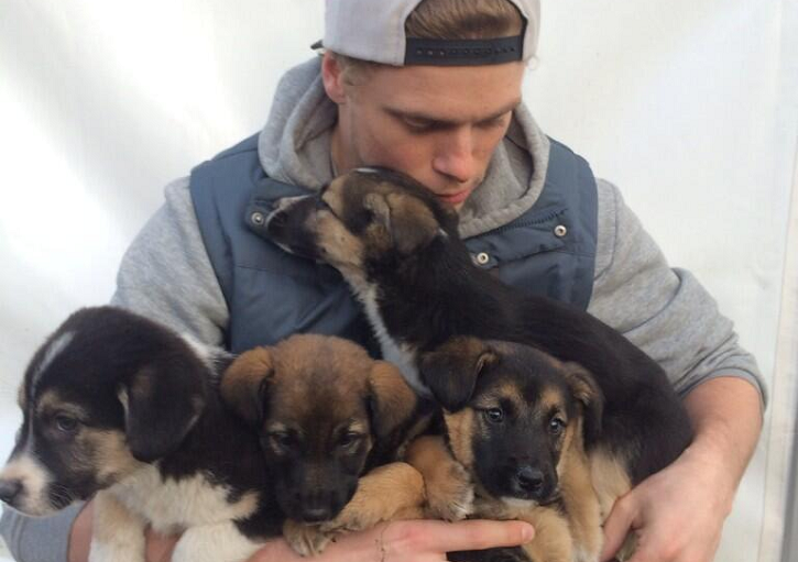 Gus rescued 5 puppies from Sochi, Russia last year.
