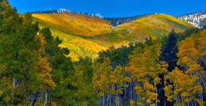 santa-fe-ski-basin-santa-fe-national-forest-10062008087_3_4_5_6_13x19