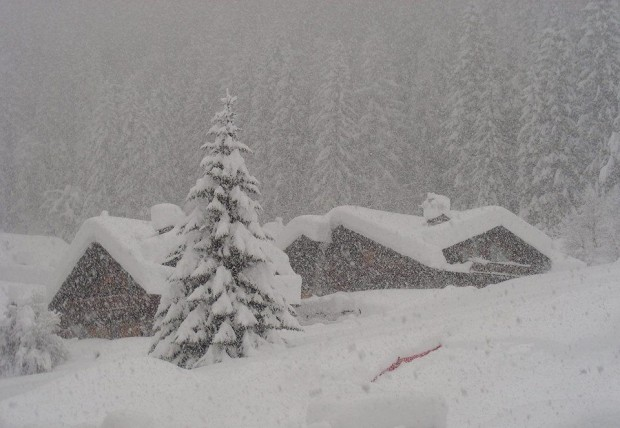 Hopefully the Sierra Nevada mountains are looking like this soon....