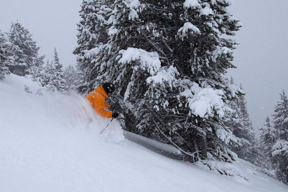 Lake Louise, Canada today with 14cms of new snow. photo: lake louise