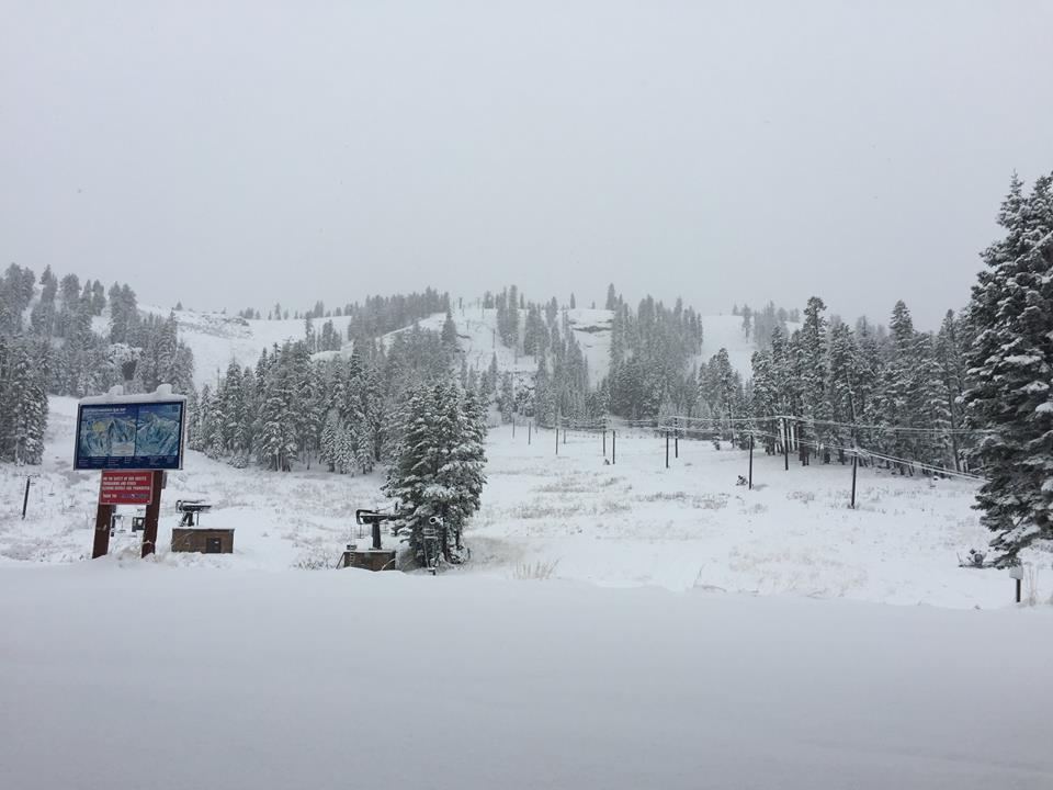 Bear Valley yesterday