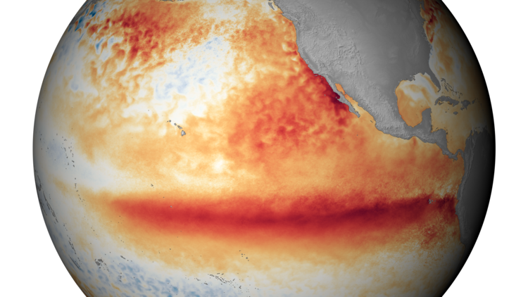 A satellite image shows the sea surface temperature in October, with the orange-red colors indicating above-normal temperatures that are indicative of El Niño. image: noaa
