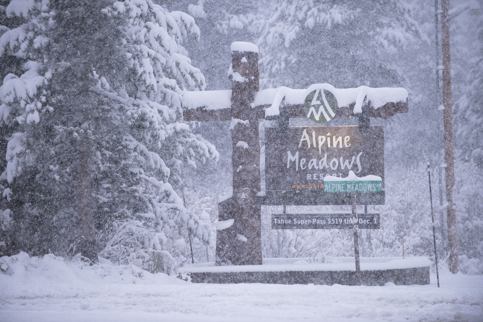 Hopefully the Alpine Meadow sign looks like this real soon.