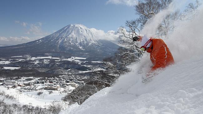 Niseko Credit: Snows Best