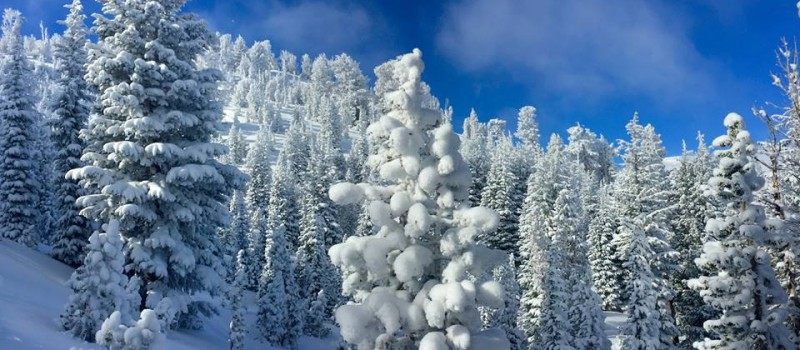 Lake Tahoe on Friday, Nov. 27th, 2015.  photo:  dr. and backcountry skier badass, Jim Sloves
