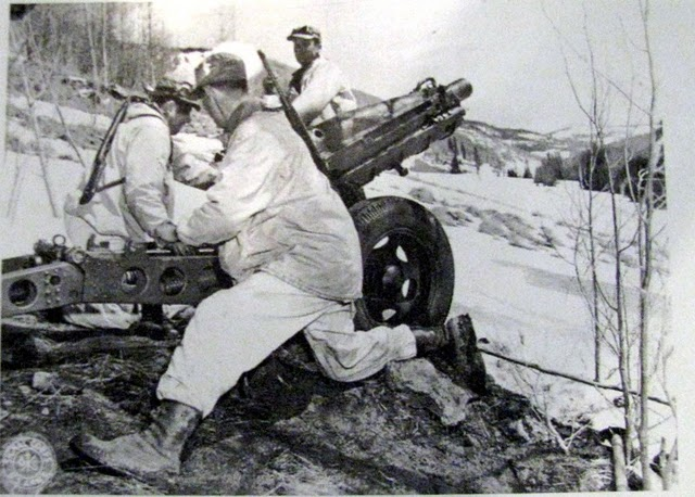 10th Mountain Division in action in WWII