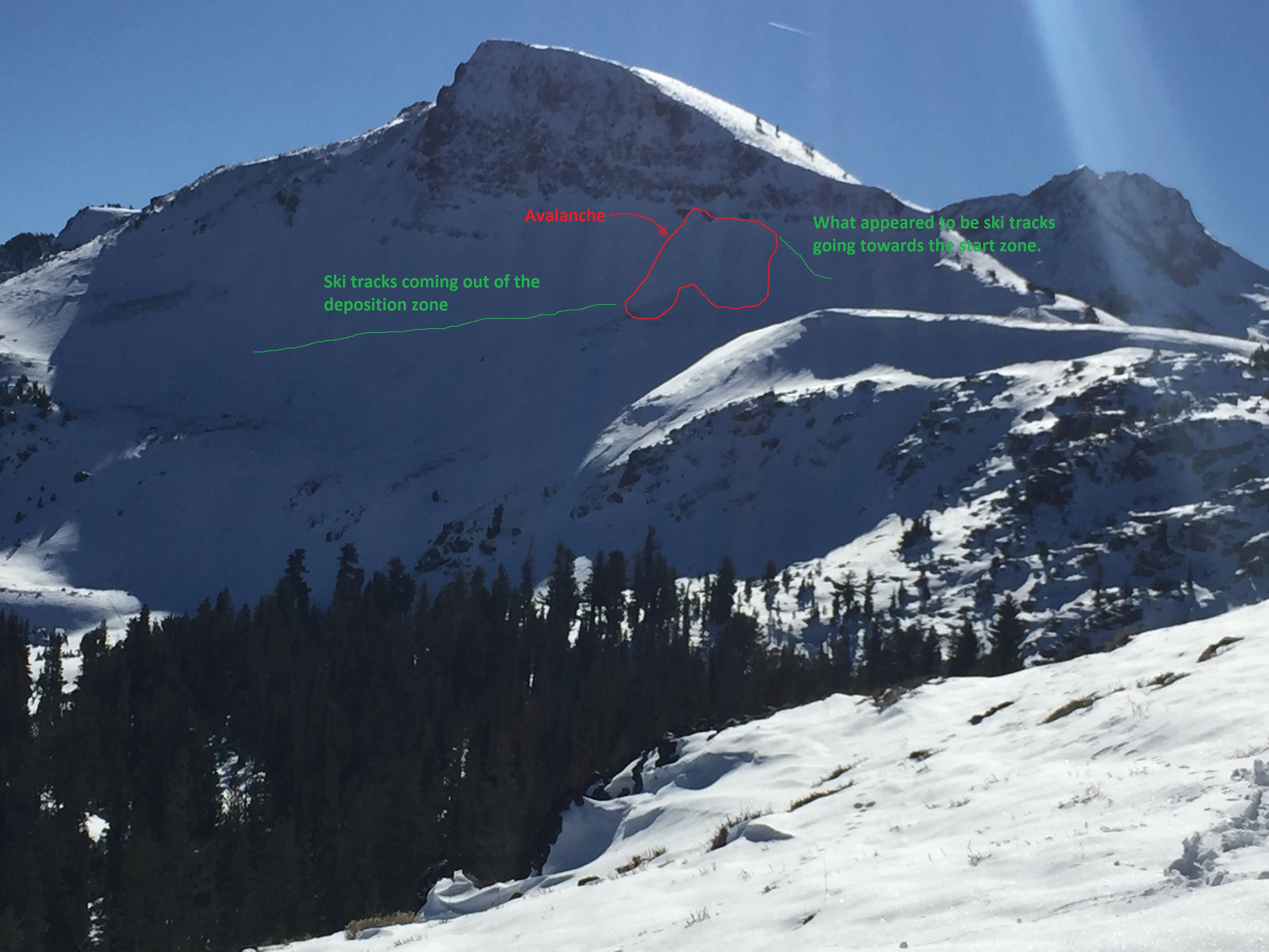 Avalanche and ski tracks outlined by Sierra Avalanche Center on Elephants Back on Nov. 11th, 2015.