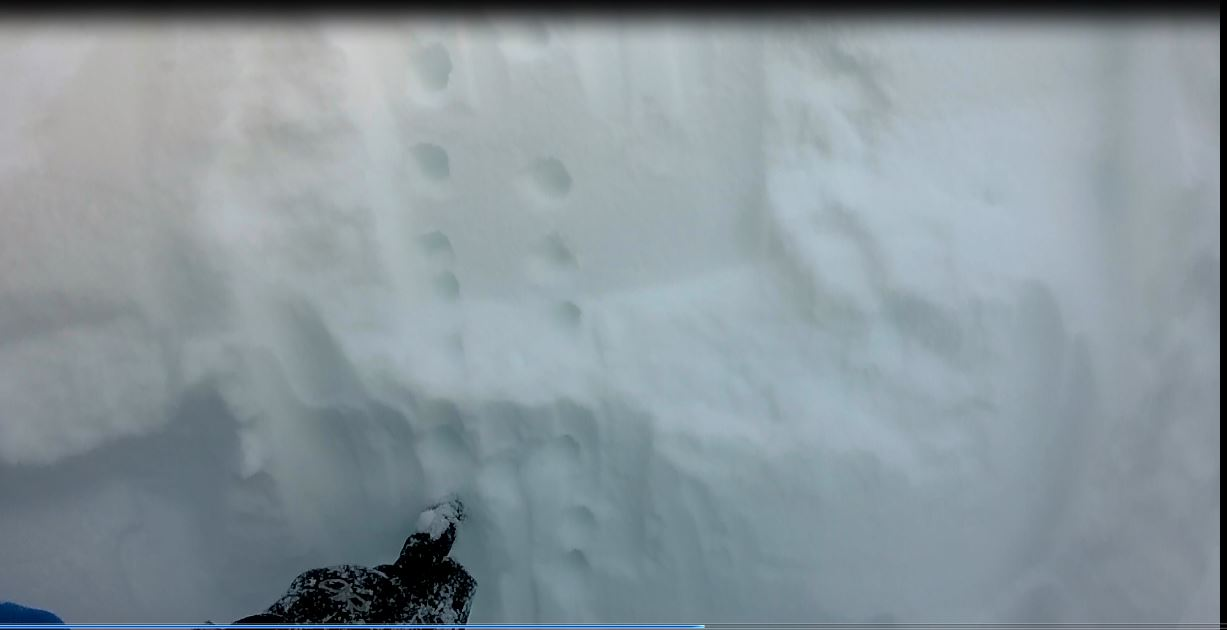 Snow pit showing good stability