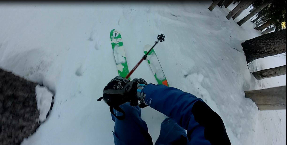 Tree skiing off lower El Funko was bottomless as well.