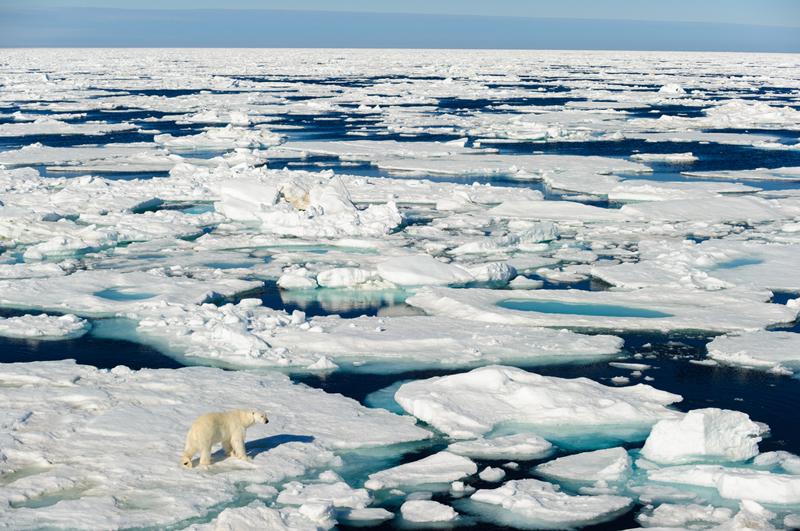 Ide Tim Indonesia Ihwal Kapal Selam Pembuat Gunung Es Diapresiasi Internasional