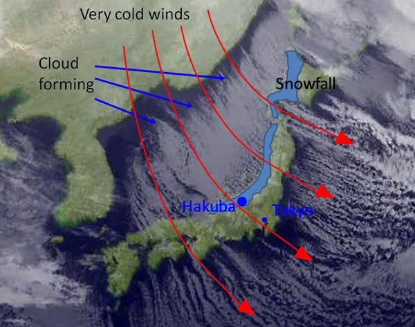 How Japan's sea-effect snow works. How Japan's sea-effect snow works. THIS is why Japan gets so much snow. image: ski.com.au How Japan's sea-effect snow works. THIS is why Japan gets so much snow. image: ski.com.au