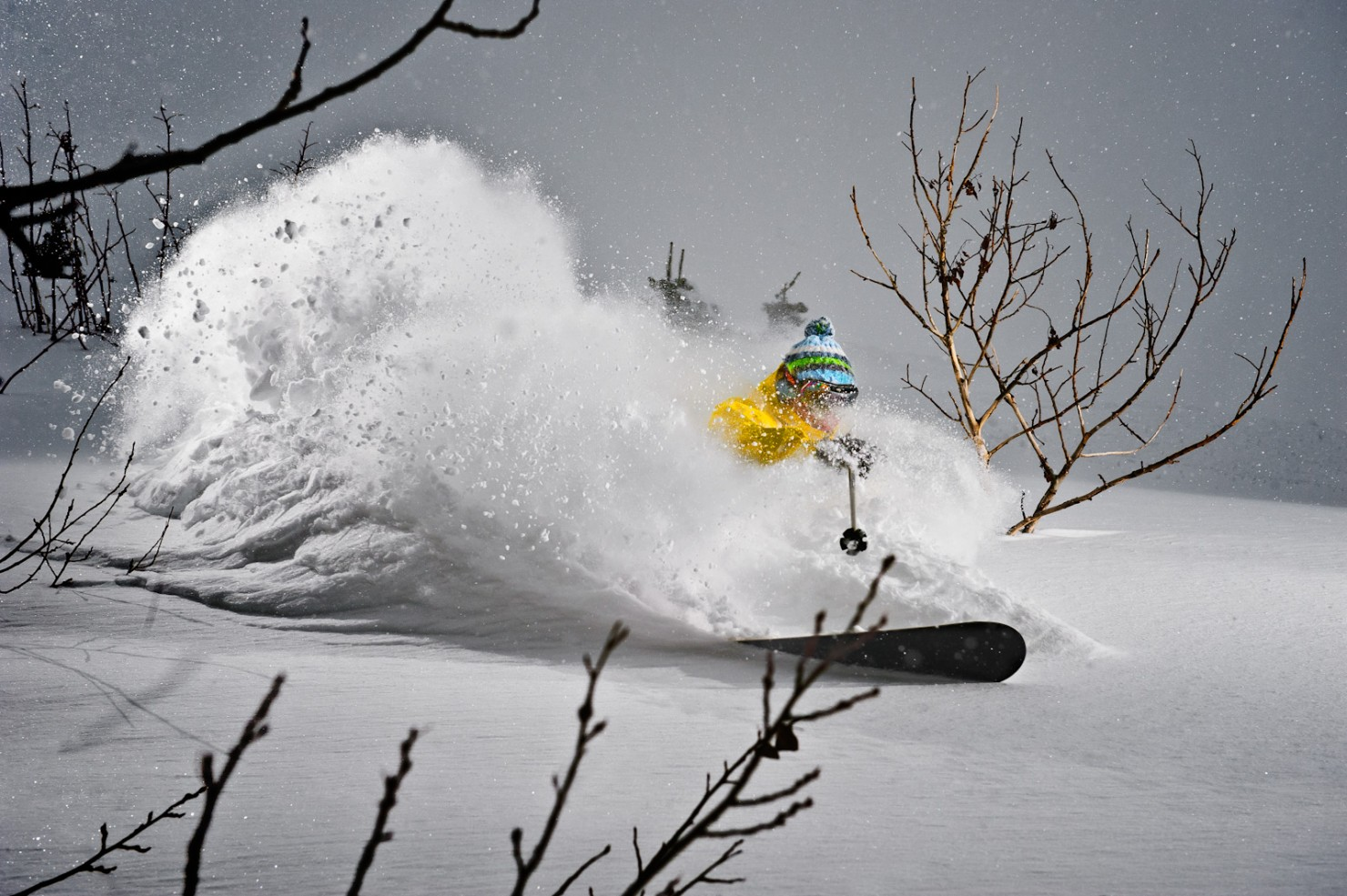 ski buying, Powder