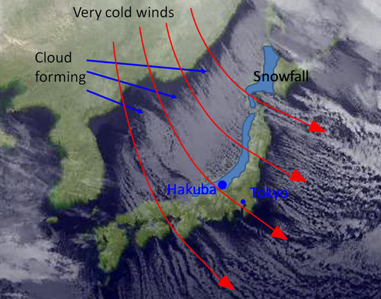 How Japan's sea-effect snow works. How Japan's sea-effect snow works. THIS is why Japan gets so much snow. image: ski.com.au