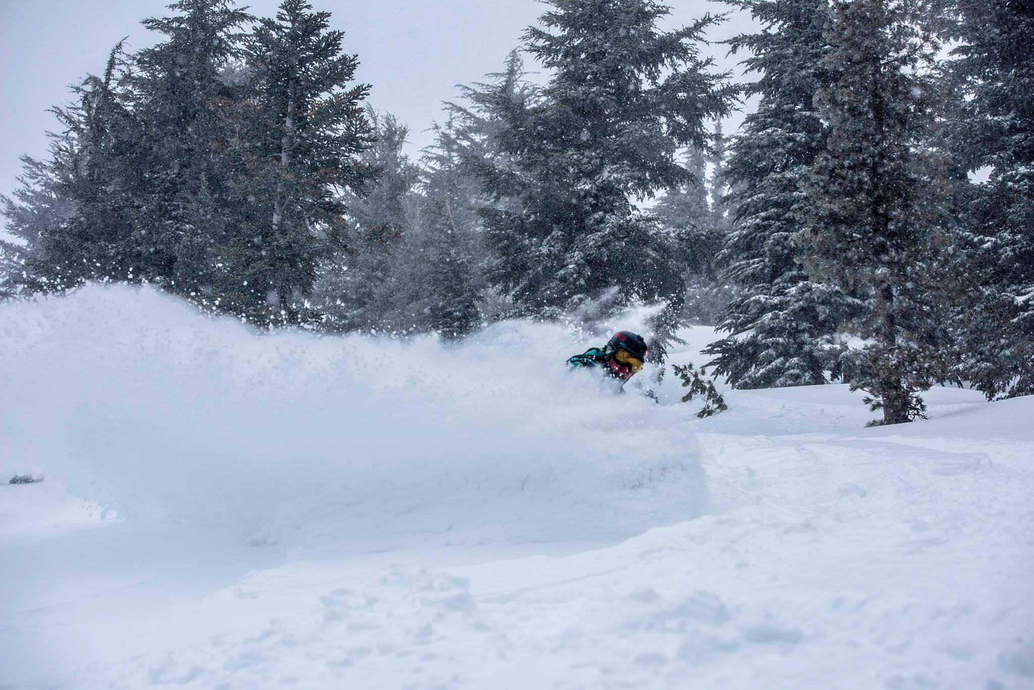 snow report kirkwood