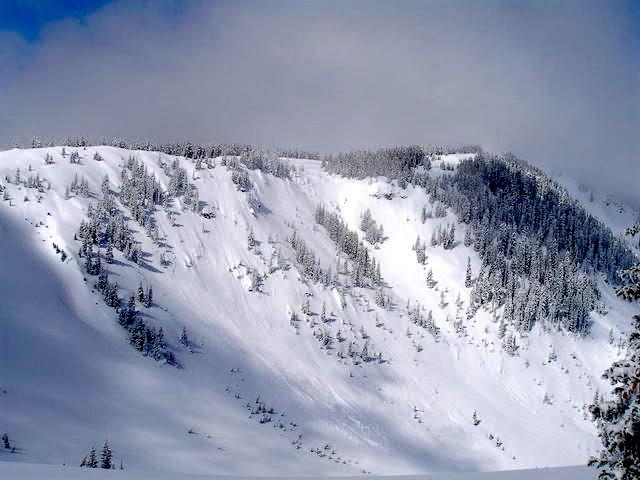 Stock image of Wolf Creek Pass, CO backcountry area. photo: splitboard.com